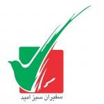 پیام تصویری سفیران سبز امید به مناسبت انتخابات92، همراه با زیرنویس انگلیسی